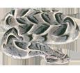 Viper - Haut 52